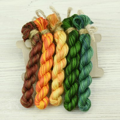 "Set of OwlForest Hand-Dyed Threads for the Embroidery Chart ""Tangerine Garland"" (DMC)"